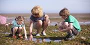 Woman and two children looking in rockpools