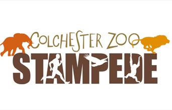 Colchester Zoo Stampede
