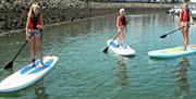 Paddleboarding at Conwy Marina