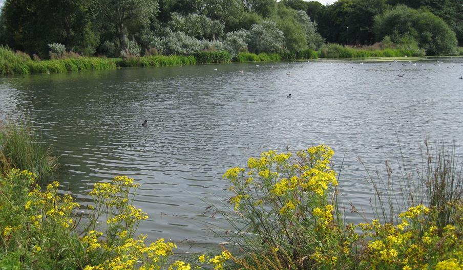 Pentre Mawr Park
