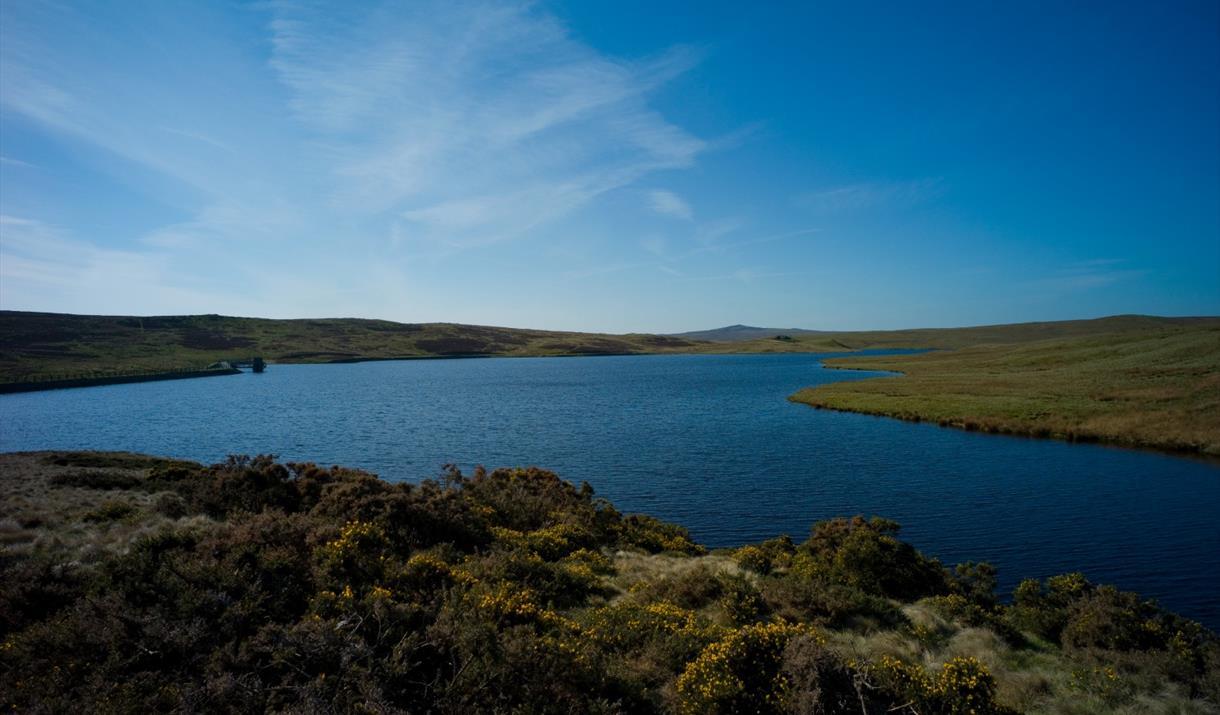 Llyn Aled and Hiraethog Moors