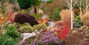 Winter Garden at Bodnant