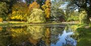 The Far End - lakeside garden and arboretum restored over five years.