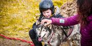 Image of boy and woman stroking a husky