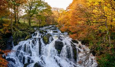 A view of the top of Swallow Falls, Betws-y-Coed.