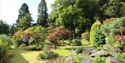 Swn-y-Dwr garden