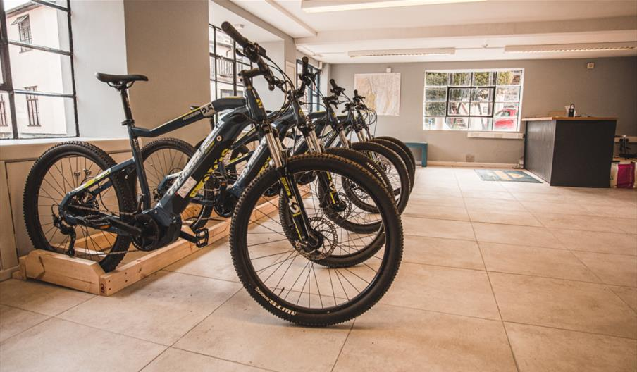 Image of a row of bikes in the store