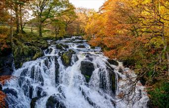 Swallow Falls | Betws-y-Coed