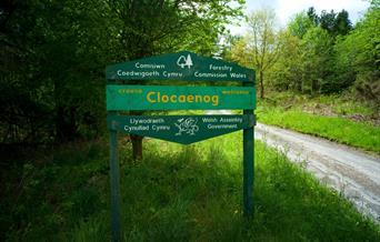 Clocaenog Forest, Conwy