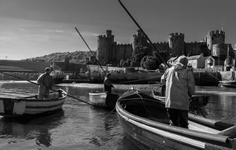 Conwy Mussel Museum