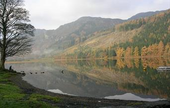 Llyn Crafnant Lake trout fishery