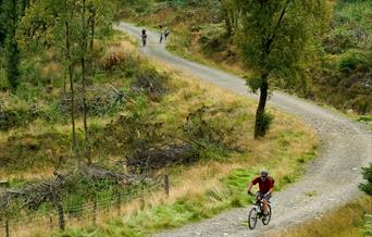 Cyclists riding on cycle path