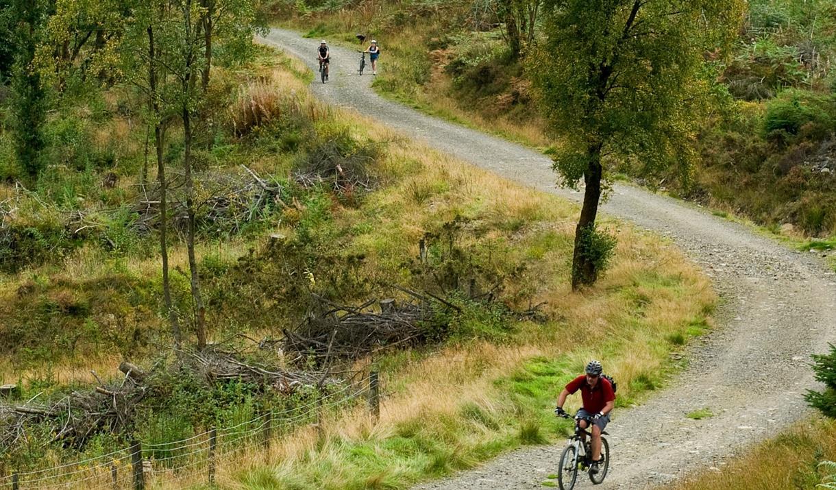 Cyclists on the Llyn Elsi Reservoir biking trail