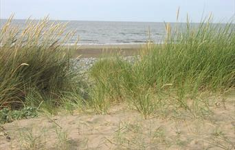 Traeth Sandy Cove