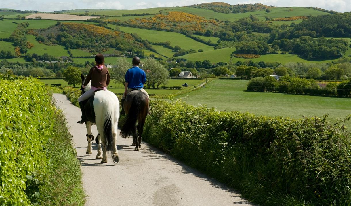 Two people riding horses on country lane