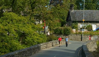 Walks from Pont y Pair in the Gwydyr Forest