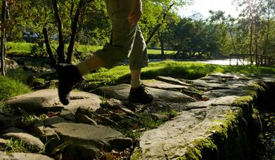 Person walking on stone pathway by a river