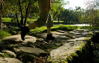 Person walking on riverside path