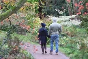 Have a hot date at Batsford Arboretum