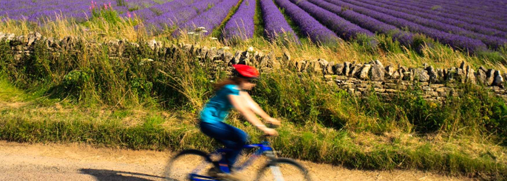 Cycling Breaks