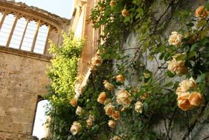 Sudeley Castle is a truly romantic place to propose