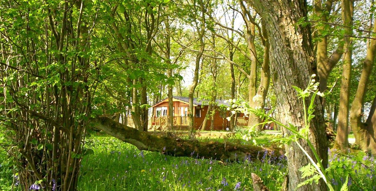 Bluewood Lodges, Kingham