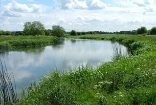The River Thames at Chimney Meadows