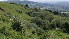 Crickley hill park