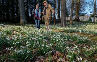 The Historic Snowdrop Garden