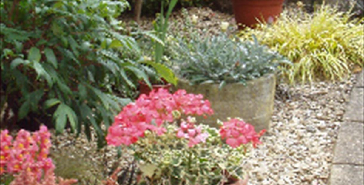 Stratton & Baunton Annual Horticultural Show