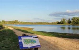 Rushy Common and Tar Lakes