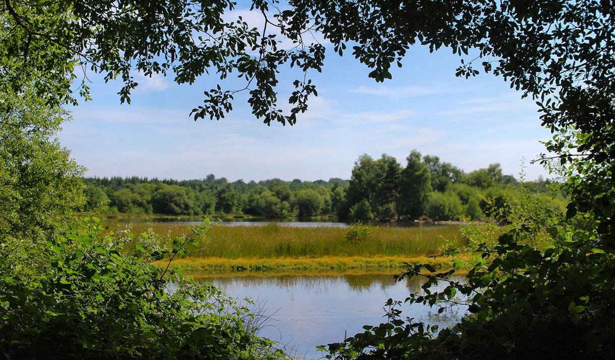 Woorgreens Lake and Nature Reserve