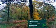 Wenchford