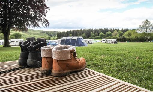 Camping in the Forest of Dean