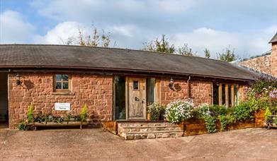 Puzzlewood Cottages