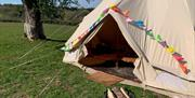 Glamping at Little Bull Hill
