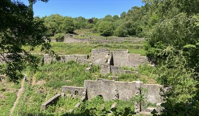 Dark Hill Iron Works, a historic site in the Forest of Dean