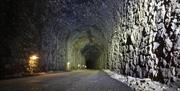 Cycle through the tunnel on Wye Valley Greenway