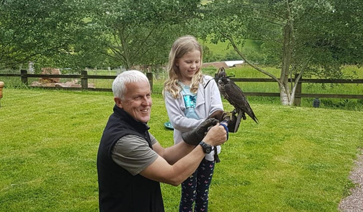 Handling and Feeding Birds of Prey Experience