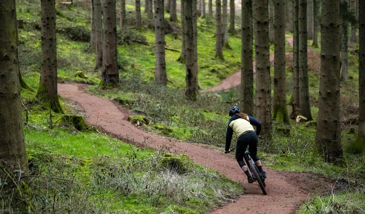 Woman riding on cycle trail