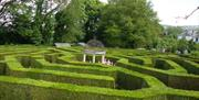 aMazing Hedge Puzzle