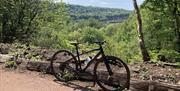 Wye Valley Bike Hire