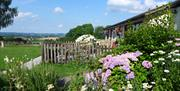 Birch Lodge at The Rock - Self Catering accommodation in the Forest of Dean near Symonds Yat