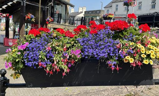 Cinderford in bloom