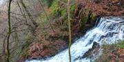 Whitestone and Cleddon Falls