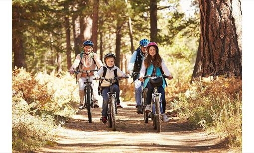 Ultimate Family Cycing Adventure at Wye-Bikes