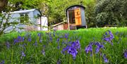 Stay on Kate Humble's farm in the shepherd's hut The Hideaway