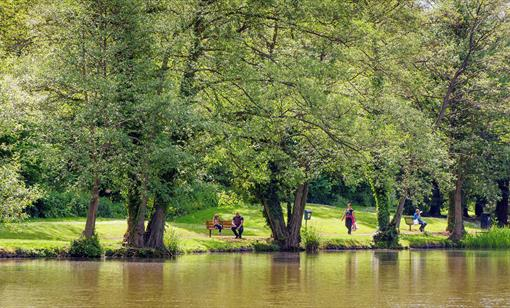 Newent Lake