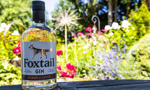 Create your own Gin at Foxtail Distillery