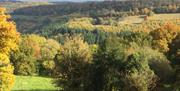 View from Robin's Barn on a late Autumn day